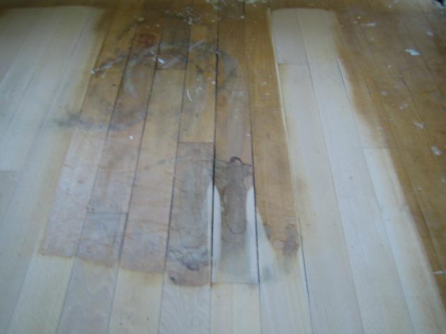 Roy parket apeldoorn parket laminaat en houten vloeren